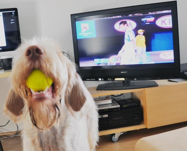 Sunday tennis. Australian Open final. Fiona on the serve.